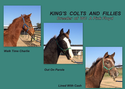King's Colts and Fillies